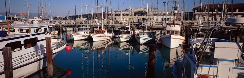 Tablou Multicanvas Port Turistic