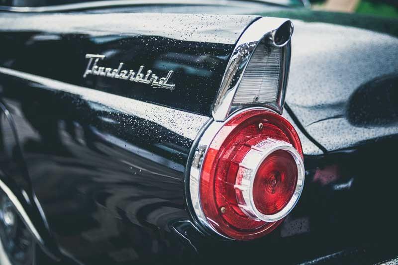 Tablou Thunderbird