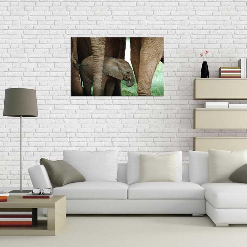 Tablou Pui de Elefant