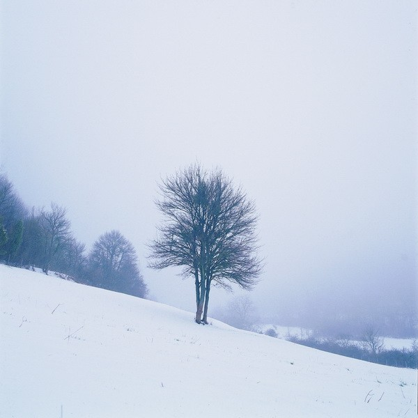Tablou Natura Iarna Zapada