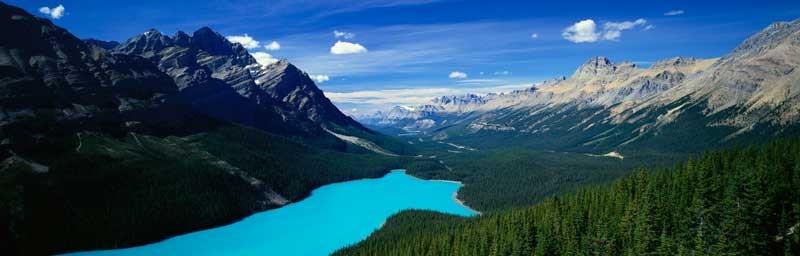 Tablou Multicanvas Lacul Peyto Canada