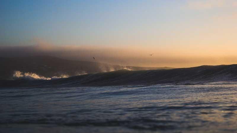 Tablou Pescarusi pe Val