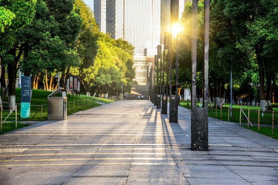 Tablouri arhitectura aleea din parc
