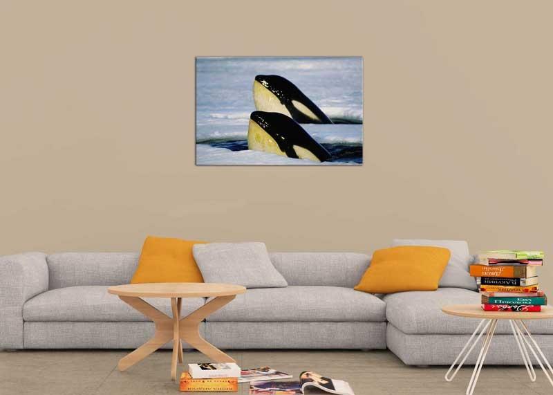 Tablou Balene