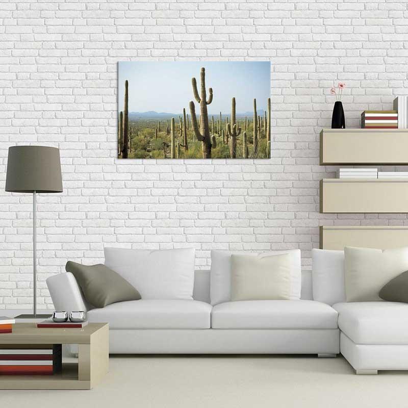 Tablou Cactusi