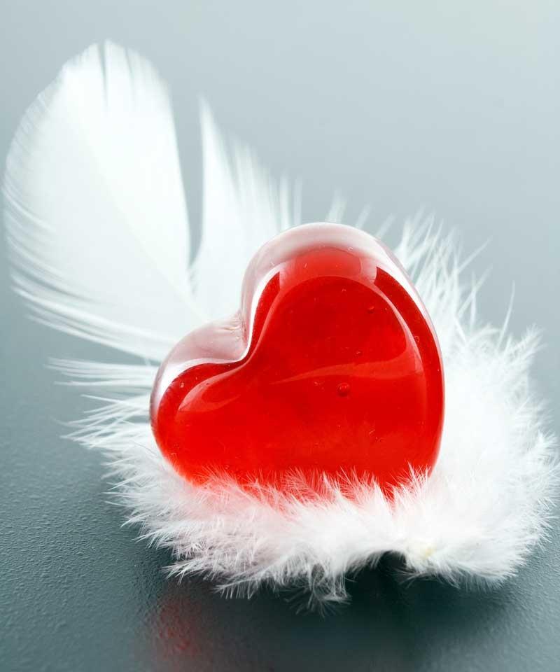 Tablou Pana cu inima