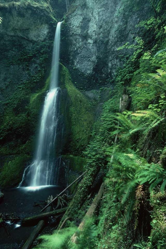 Tablou Cascada