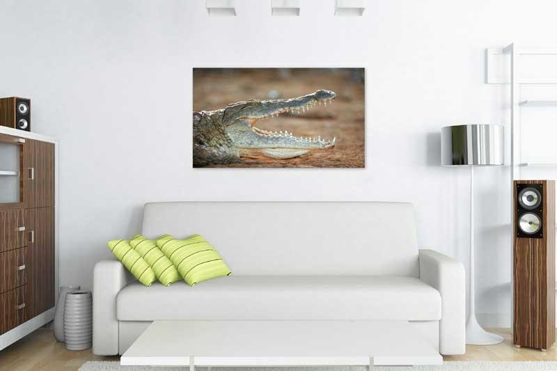 Tablou Crocodil