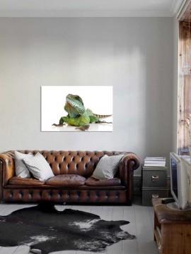 Tablou Iguana