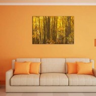 Tablou Copaci cu frunze galbene