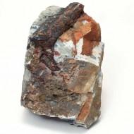 Tablou Fosila