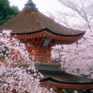 Tablou Japonia
