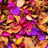 Tablou petale de flori