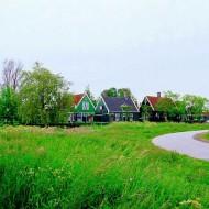 Tablou Olanda