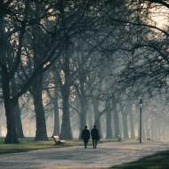 Tablou Plimbare prin Parc