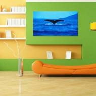 Tablou Coada de Balena
