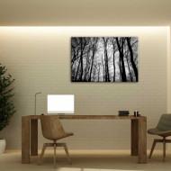Aurora boreala - tablou natura