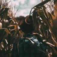 Tablou Agricultor