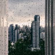 Tablou toamna ploaie