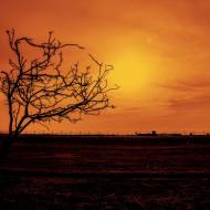 Tablouri toamna - apus de soare