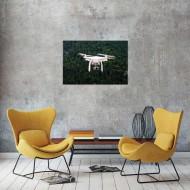 Tablou Drona