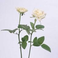 Tablou Trandafir