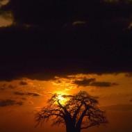 Tablou Apus de soare