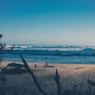 Tablou Plaja Israel