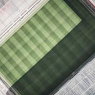Tablou Teren Fotbal