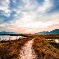 Tablouri peisaje drumul spre apus de soare