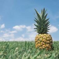 Tablou Multicanvas Ananas