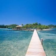 Tablou Paradisul Tropical