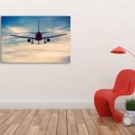 Tablouri avioane zbor lin