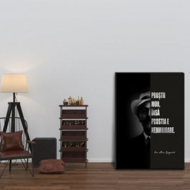 Talou Citate Motivationale Ion Luca Caragiale - Despre Prostie