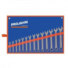 Set de chei fixe si inelare combinate PROJAHN metrice 6-19 mm 14 buc/set
