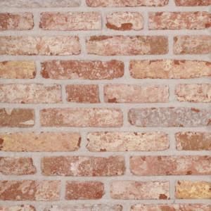 Terca Belle Epoque de Mons (215 x 65 x 23 mm)