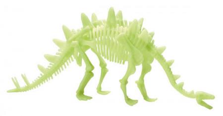 Schelet Stegosaurus reflectorizant