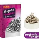 Set creativ - Sculptura magnetica