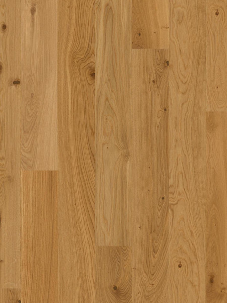 Oak Animosso Ulei natural periat EBG84KFD (10036716)