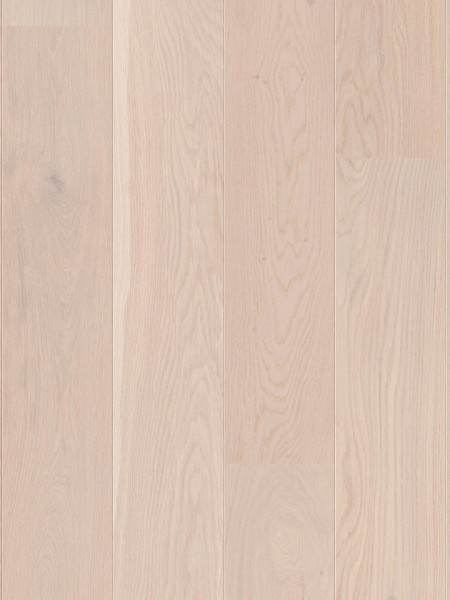 Oak Pearl Ulei natural ORGV4MFD (10036439)
