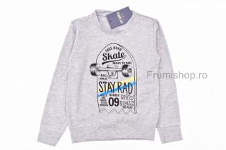 Bluza Skate (gri)