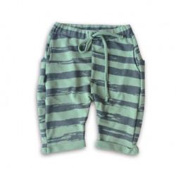 Pantaloni scurti verde cu dungi