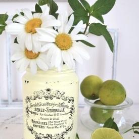 Vaze frantuzesti Shabby French Jars