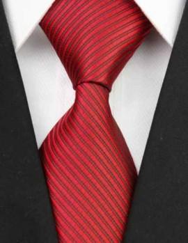 Poze Model 4 - cravata matase