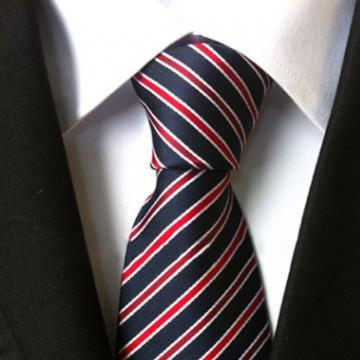Poze Model 10 - cravata matase 100% + cutie cadou