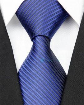 Poze Model 6 - cravata matase 100% + cutie cadou