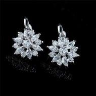 Cercei eleganti cu cristale - Shinning Stars
