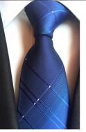 Model 49 - cravata matase naturala 100%, tesatura jaquard