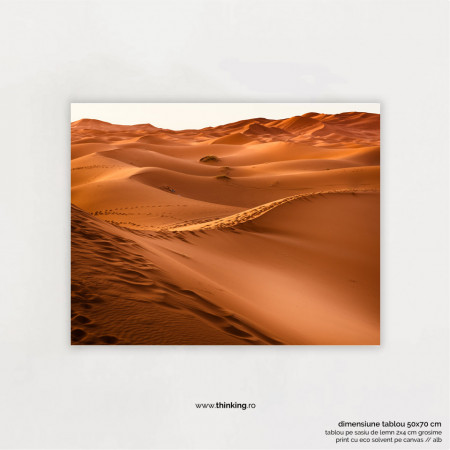 brown desert landscape