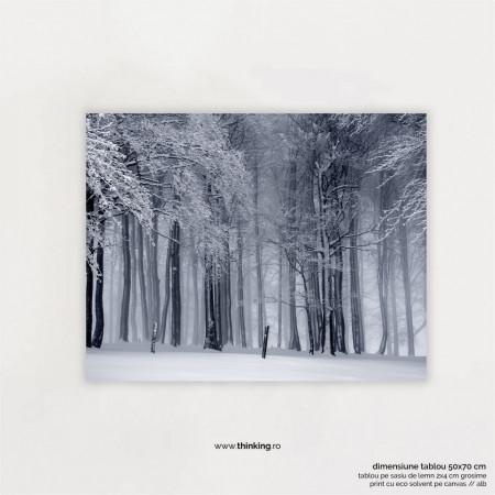 winter forest landscape #2